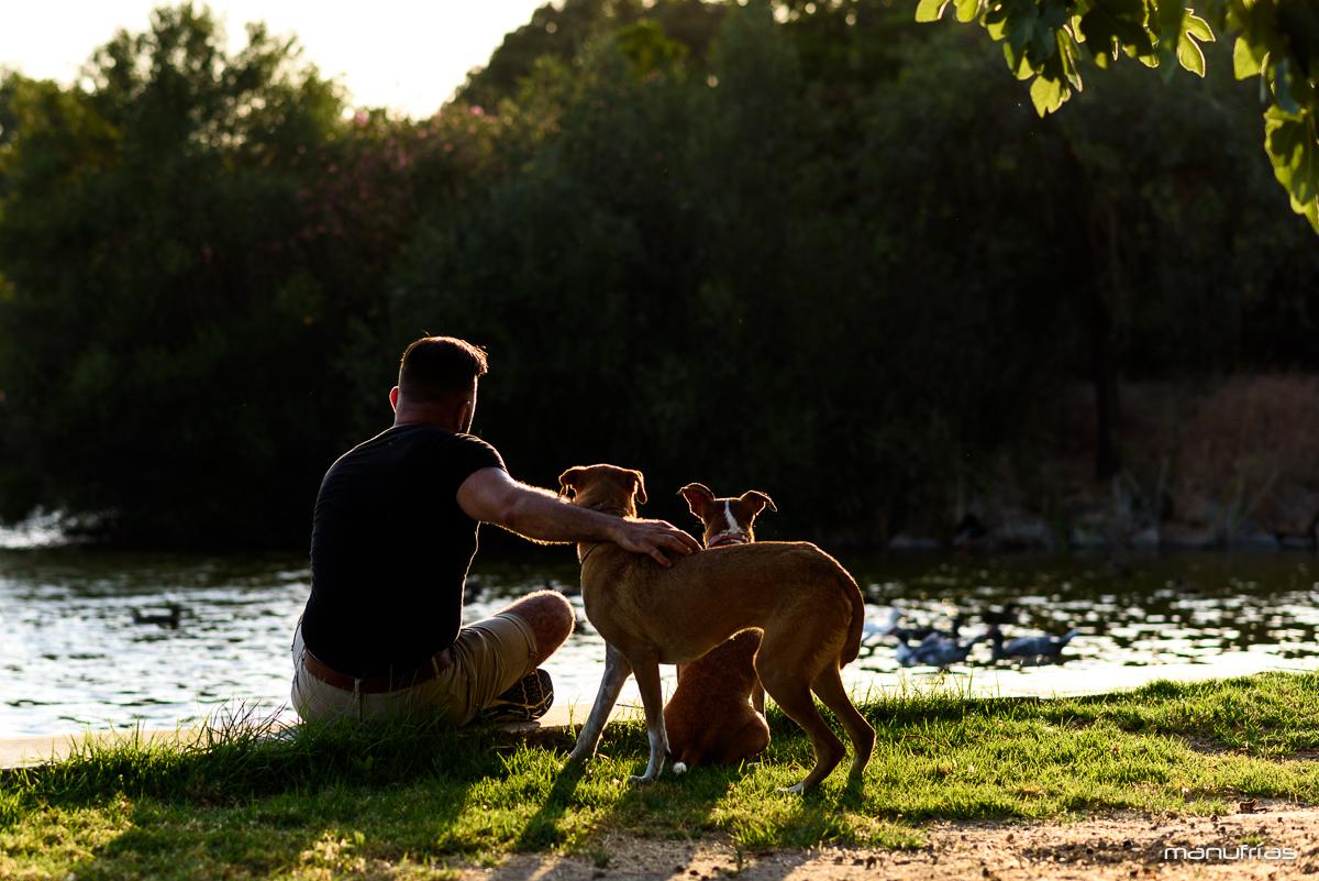 manufrias-fotografo-de-perros-en-sevilla